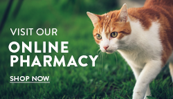 Shop Online at Vets First Choice