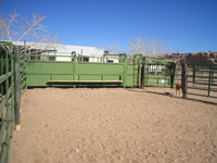 Large Animal Pen