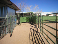Large Animal Corral