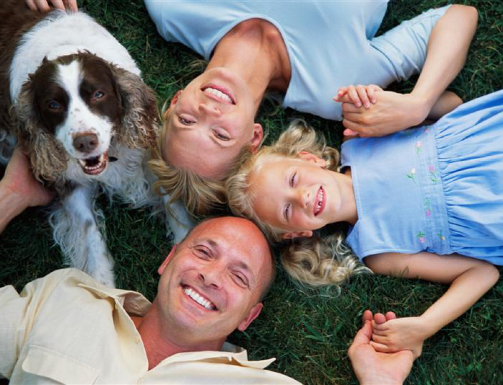 How to Afford Pet Care for Your Pet